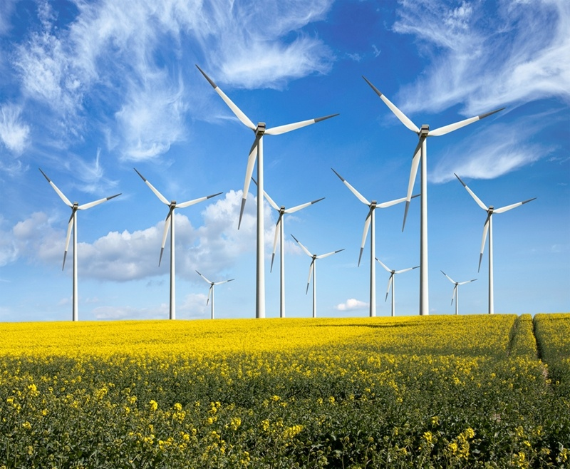Mexico's commitment to the use of renewable energy sources caught the attention of General Motors, especially within the field of wind energy.